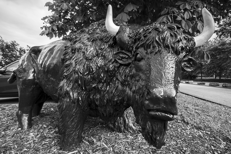 Buffalo Grill, Thionville, Frankrijk