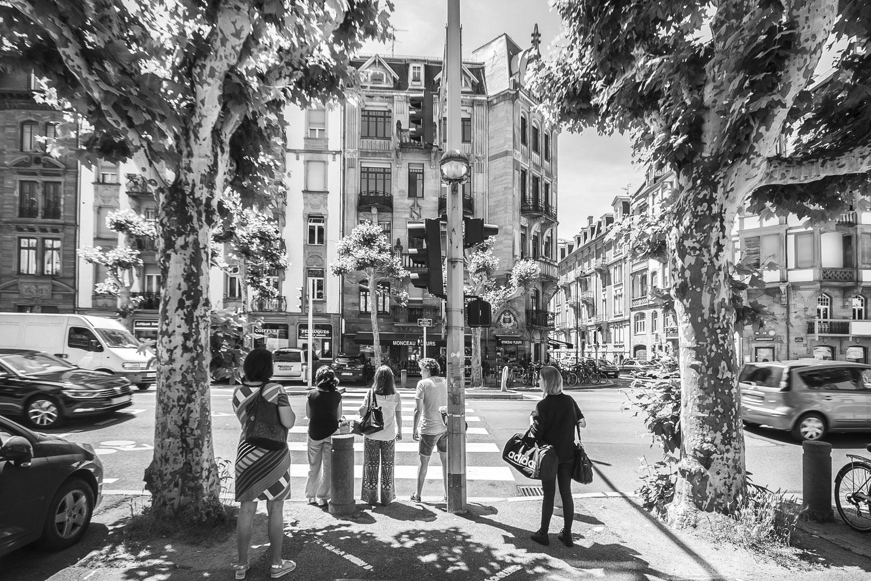 Avenue des Vosges, Elzas, Frankrijk