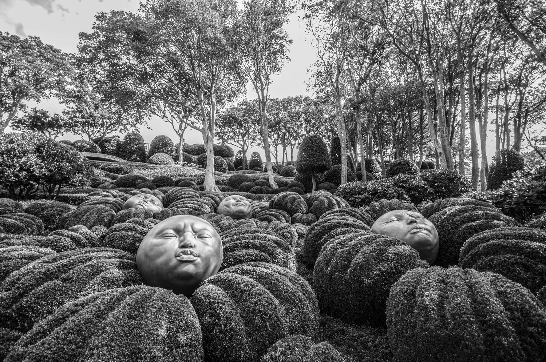 Les Jardins d'Etretat, Étretat, Normandië