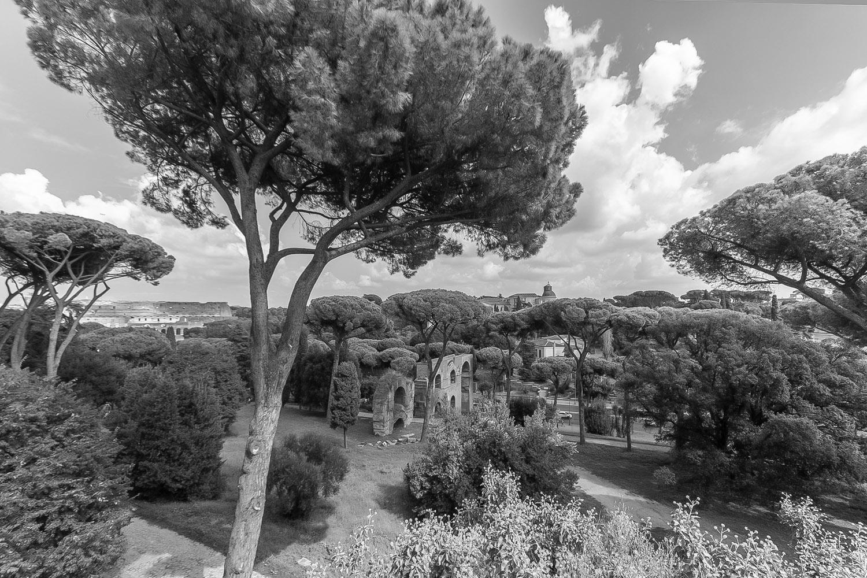 Palatijn - Rome sept. 2018 - foto: Per Bos